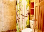 Guest bathroom-1