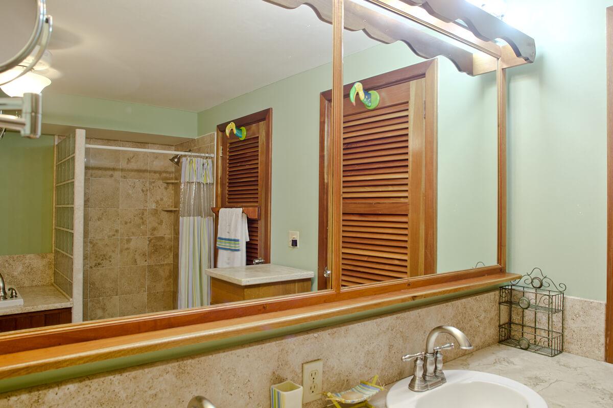 Master bathroom-4